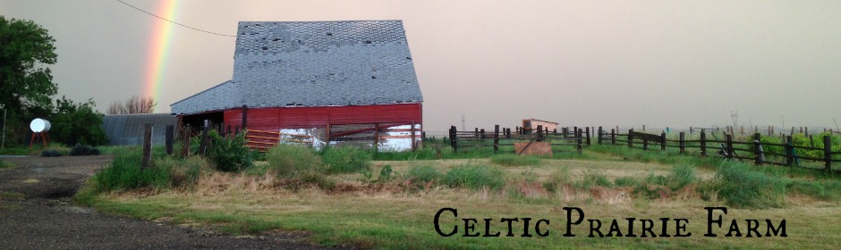 Celtic Prairie Farm