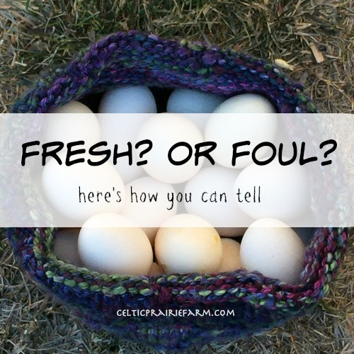 fresh or foul